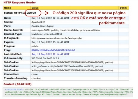 Web-Sniffer - monitorando o HTTP Header