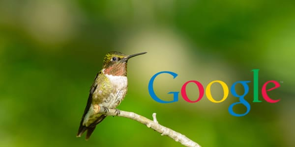 Google Humminbird
