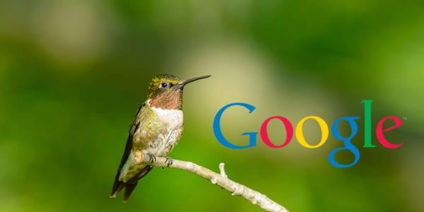 Google Humminbird